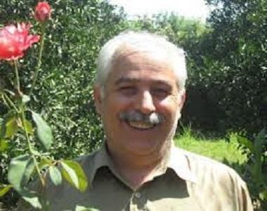 Masoud Ladoni
